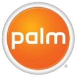 Palm (38)